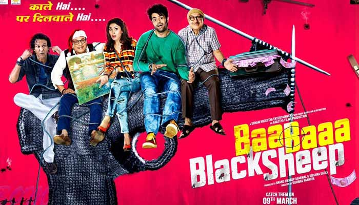 baa baaa back sheep movie review