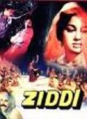 Ziddi