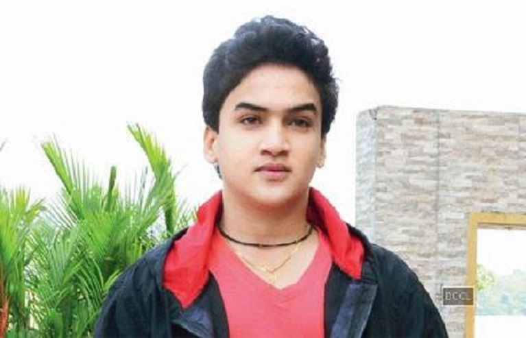 Small Screen's 'Maharana Pratap' Awaits 'right Opportunity