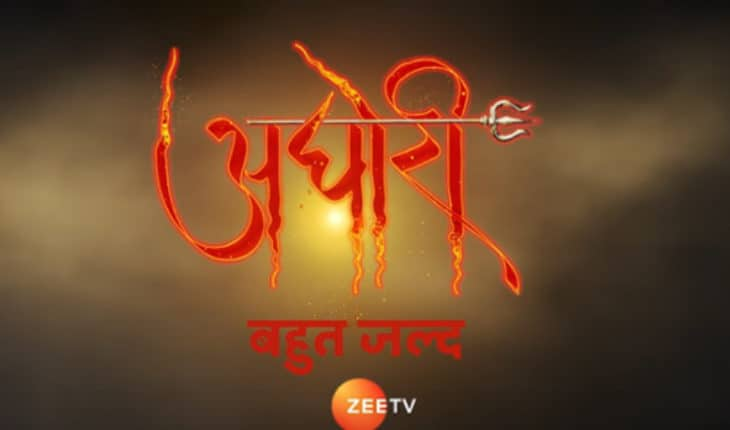 THIS popular Pavitra Rishta actor to play lead antagonist in Zee