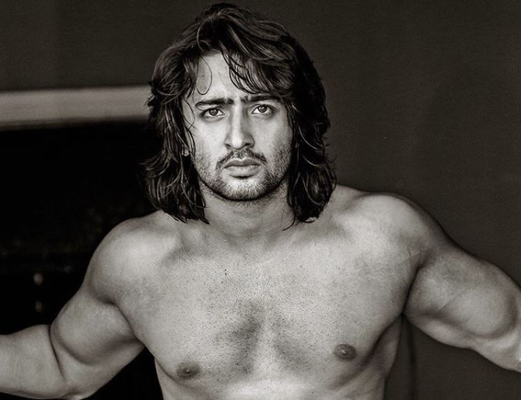 Shaheer sheikh in talks for his next project and it is not ekta ever since his last venture on sony tv kuch rang pyar ke went off air fans of hottie shaheer sheikh have been awaiting for his return to tv eagerly reheart Gallery