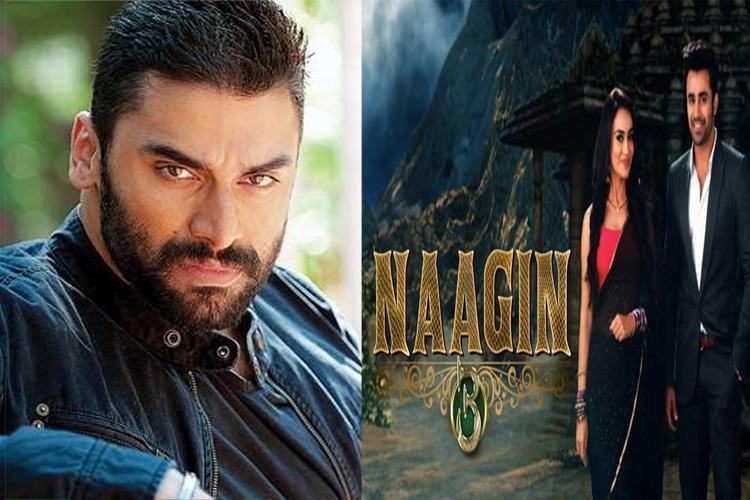 Afer 'Ishqbaaaz', Nikitin Dheer to be seen in Colors' Naagin