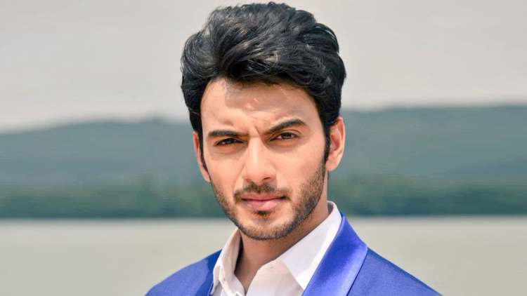 GUESS! Which Qubool Hai Actor Will Make His Digital Debut In